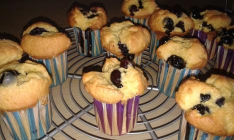 Lisa's Choice Cupcake 1