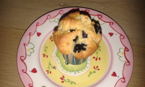 Lisa's Choice Cupcake 2